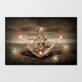 Medi Modus Canvas Print