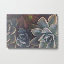 Arty Botanical Aloe #3  Metal Print