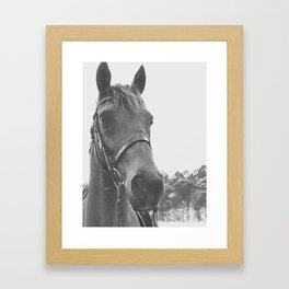 Chase in Black & White Framed Art Print