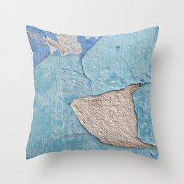 011 Throw Pillow