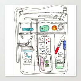 What's In Your Bag Canvas Print