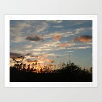 Sunset over the forest Art Print