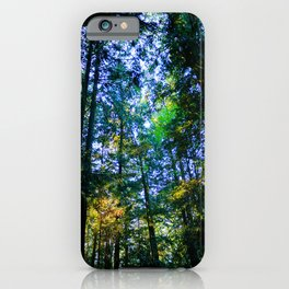 Colour Play in Tree Canopy iPhone Case