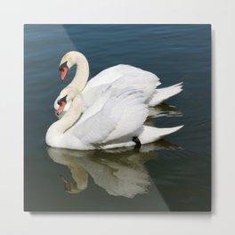 Synchronized Swans Metal Print
