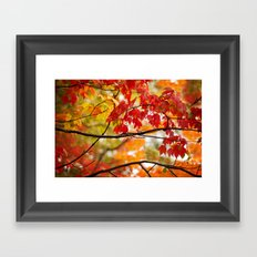 Autumn Bliss Framed Art Print