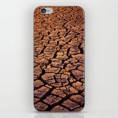 Cracked iPhone & iPod Skin
