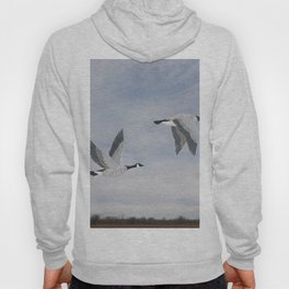Canada geese and blue sky Hoody