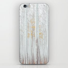 White tree forest iPhone Skin