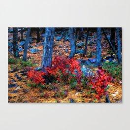 'Fall Fire' Canvas Print