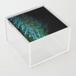 Peacock Details Acrylic Box