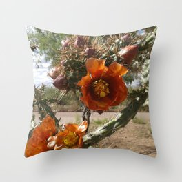 orange cholla cactus flower Throw Pillow