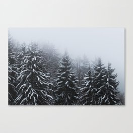 Fog over snow covered spruce forest in winter Canvas Print