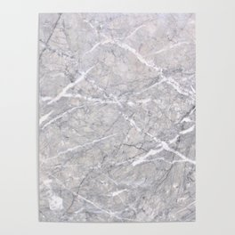Through the Branches Gray Marble Poster