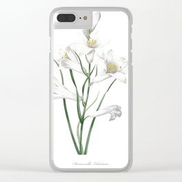 HIGHEST QUALITY botanical poster of Daylily Clear iPhone Case