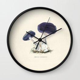 Very old illustration of the mushroom Agaricus Violaceus. Wall Clock