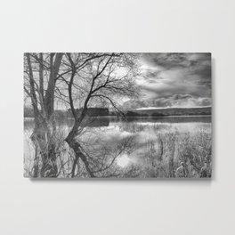 A view across the lake. Metal Print