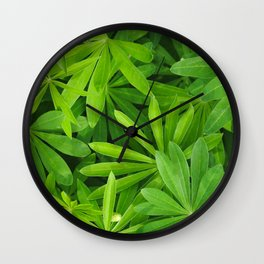 Green background. Leafs of lupine flowers close up. Wall Clock