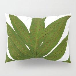 Tropical Fern Botanical Pillow Sham