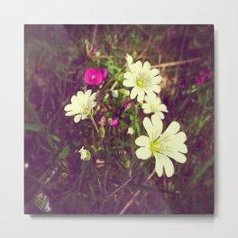 Lopez Island beach wildflowers Metal Print