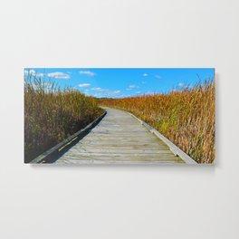 Point Pelee National Park Boardwalk in Leamington ON, Canada Metal Print