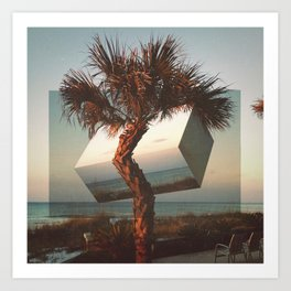 twisted palm Art Print