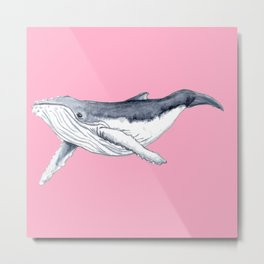 Cute Baby humpback whale pink for girls Metal Print