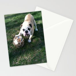 Bulldog Playing Soccer Stationery Cards