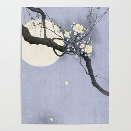 Full Moon and blossom Poster