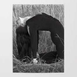 Healing Field Meditation Poster