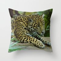 jaguar Throw Pillows featuring  Jaguar  by Darren Wilkes Fine Art Images