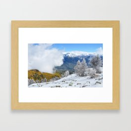 The Gift Of Nature Framed Art Print