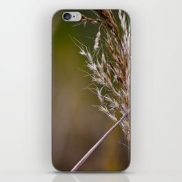 The Wind Blows through the Wheat iPhone Skin