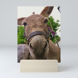 CUTE DONKEY FACE Mini Art Print