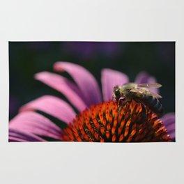 Honey bee on purple cone flower Rug