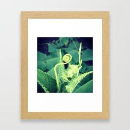 little buddy Framed Art Print