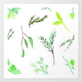 Herbaceous Art Print