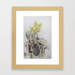 vivere et vivere sinere #7 Framed Art Print