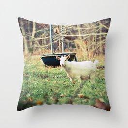 Billy's Bonny Bairn Throw Pillow