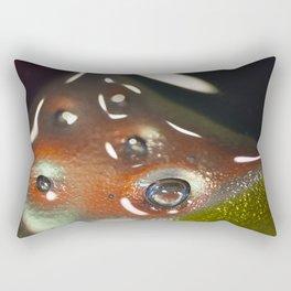 Platter 29- 4 Rectangular Pillow