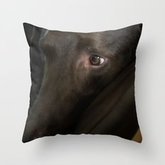 My Friend Chocolate Lab Throw Pillow