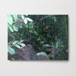 Frazer Island Rainforest in Green Metal Print