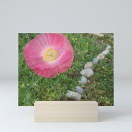Pink Poppy Over Pathway Mini Art Print
