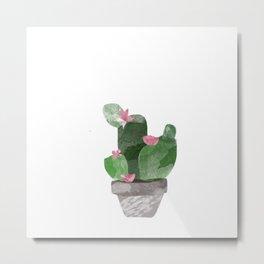Cacti? Metal Print