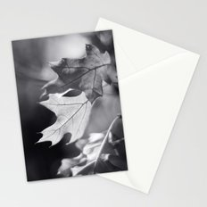 Winter Oak in Black and White Stationery Cards