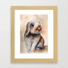 BUNNY #2 Framed Art Print