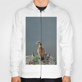 Egyptian Goose and Goslings Hoody
