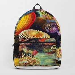 Under the Sea : Sea Anemones (Actiniae) by Ernst Haeckel Backpack