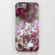 Hydrangeas No. 4 iPhone 6s Slim Case