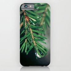 Deep in the woods iPhone 6s Slim Case