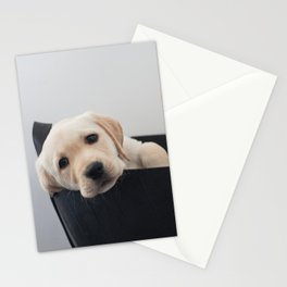 Labrador Puppy Stationery Cards